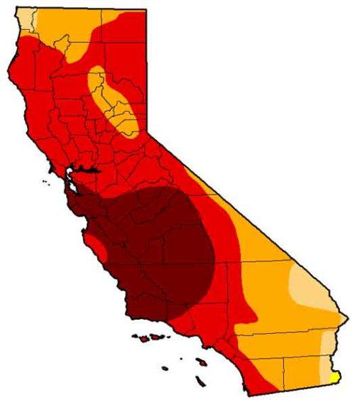 BLOG Drought