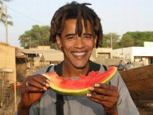 BLOG Melon