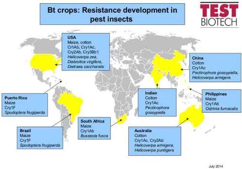 BLOG GMO fails