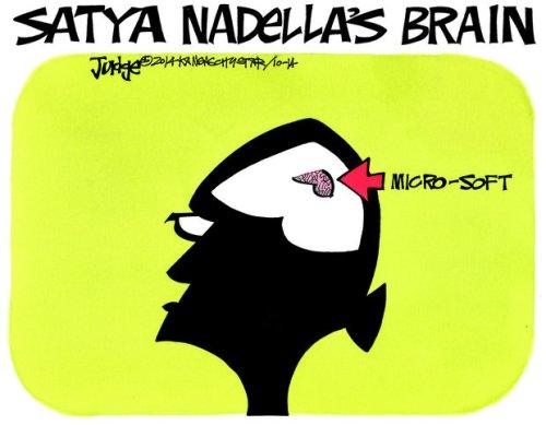 BLOG Nadella