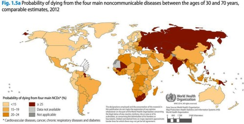 global status report on noncommunicable diseases 2016 pdf