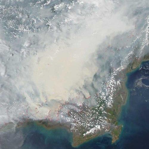 BLOG Borneo