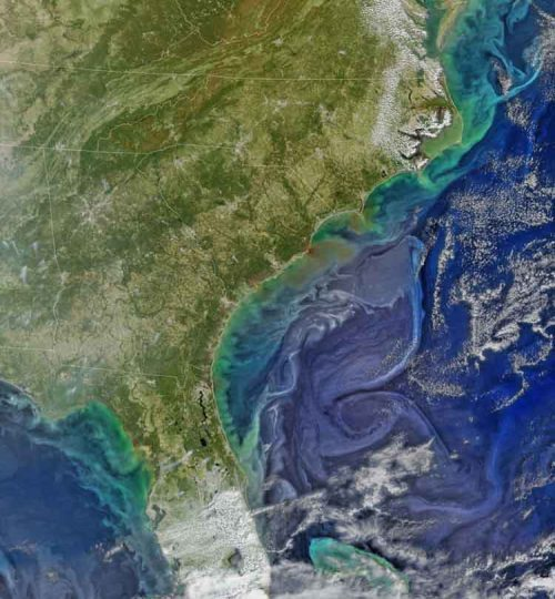 Damaging heavy rains fell on South Carolina in the southeastern United States at the beginning of October 2015. Much of that water had, by mid-October, flowed into the Atlantic Ocean bringing with it heavy loads of sediment, nutrients, and dissolved organic material. The above VIIRS image shows the runoff as it interacts with ocean currents.