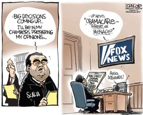 BLOG Scalia Cole