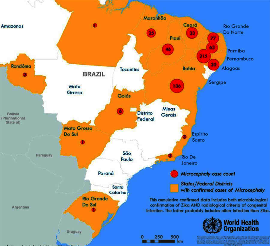 Zika Update Microcephaly Sex And Warnings Eats Shoots N Leaves - Argentina zika map