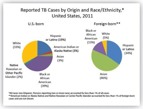 BLOG TB