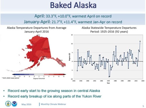 An intensely warm winter and spring are melting climate records across Alaska. The January-April 2016 period was an incredible 11 degrees above normal, setting the stage for a potentially unprecedented summer. (NOAA)