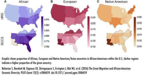 BLOG Ancestry