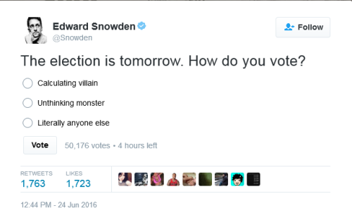 BLOG Snowden vote