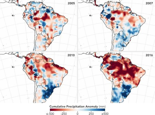 Vast areas of the Amazon basin are stricken by an El Niño-spawned drought.