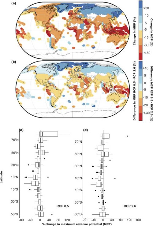 Impacts of climate change on MCP and MRP by the 2050 s (average between 2041–2060) relative to the 2000 s (average between 1991–2010): (a) mean percentage change in projected maximum catch potential (MCP) of 280 Exclusive Economic Zones (EEZs) and mean percentage change in projected MRP of 192 fishing nations in the 2050 s relative to the level in the 2000 s under RCP 8.5 scenario; (b) differences in percentage change in MCP and MRP between RCP 8.5 and RCP 2.6 scenarios in the 2050 s; (c,d) latitudinal zonal average of mean percentage change in fisheries MRP in different fishing countries under RCP 8.5 (c) and RCP 2.6 (d).