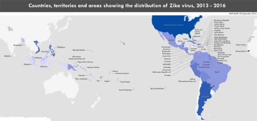 blog-zika