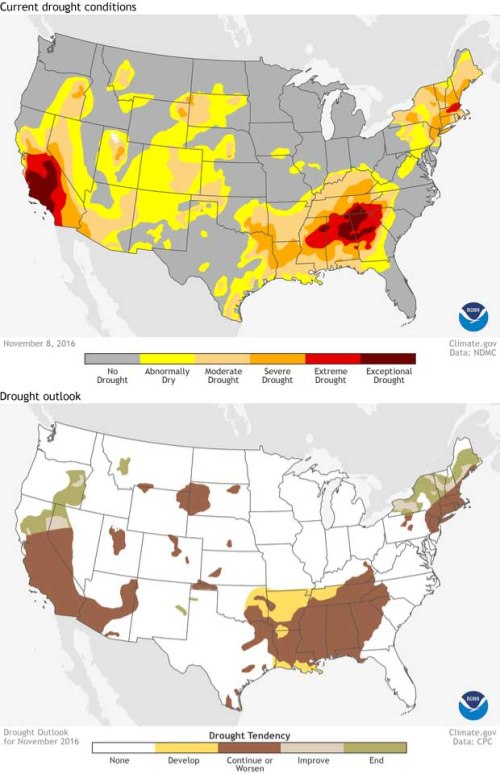 blog-drought