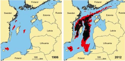 Hypoxic (red) and anoxic (black) bottom waters in the central Baltic Sea, 1906 vs. 2012. This dead zone is approximately three times the size of the Gulf of Mexico dead zone.