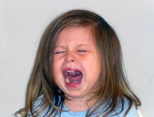 blog-sadie-cry
