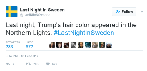 blog-trumpswede-2-hair